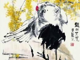 《鹤羽天宽》