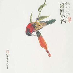 太阳鸟-独雀寻芳系列~2