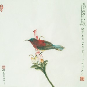 太阳鸟-独雀寻芳系列~9