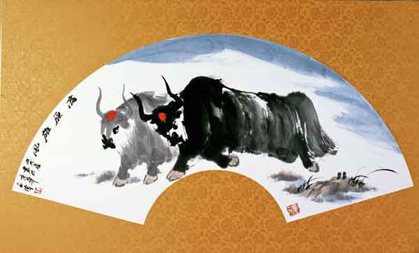 牦牛系列十三